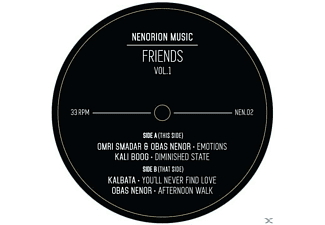 VARIOUS - Friends Vol.1 EP - (Vinyl)