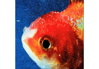 Vince Staples - Big Fish Theory (CD)