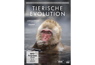 David Attenborough: Tierische Evolution - (DVD)