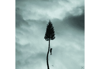 Manchester Orchestra - A Black Mile To The Surface - (LP + Download)
