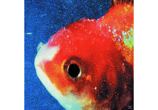 Vince Staples - BIG FISH THEORY - (CD)