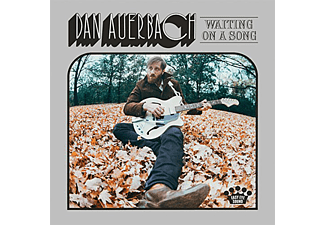 Dan Auerbach - Waiting on a Song (Vinyl LP (nagylemez))