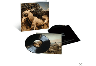 Interpol - Our Love To Admire (10th Anniversary,2LP) - (Vinyl)