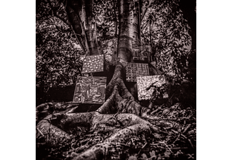 Kamasi Washington - Harmony Of Difference - (CD)