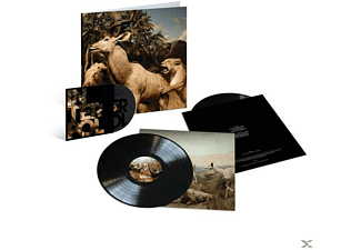 Interpol - Our Love To Admire (10th Anniv.,Ltd.2LP+1 DVD) - (LP + DVD Video)