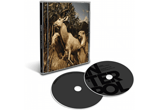 Interpol - Our Love To Admire (DVD + CD)