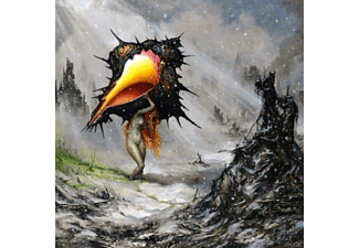 Circa Survive - The Amulet (Black Vinyl) - (Vinyl)