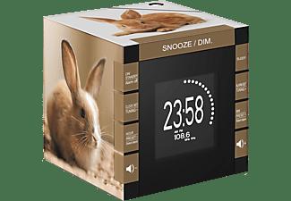 Bigben Interactive Big Ben, Radio Clock LED Display Lapin (RR70PLAPIN)