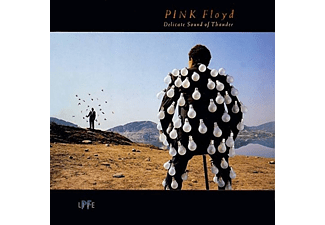 Pink Floyd - Delicate Sound of Thunder (Remastered Edition) (Vinyl LP (nagylemez))