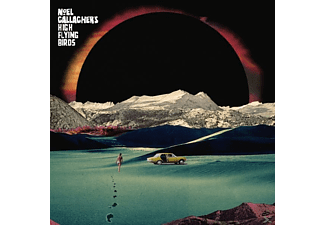 Noel Gallagher's High Flying Birds - Holy Mountain - (Vinyl)