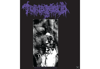 Tomb Mold - The Bottomless Perdition/The Moulting - (CD)