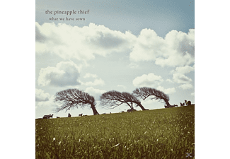 PINEAPPLE THIEF - WHAT WE HAVE SOWN - (CD)