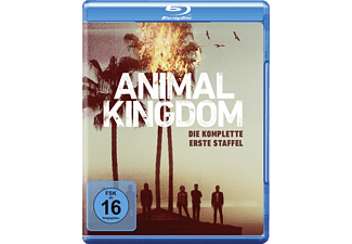 Animal Kingdom: Die komplette 1. Staffel [Blu-ray]