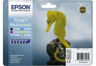 EPSON T0487 Multipack Colour