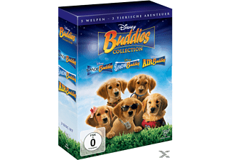 Buddies Pack Kinder/Jugend DVD
