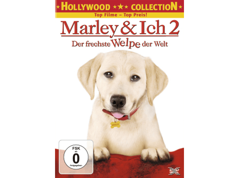 Ich 2: Der frechste Welpe der Welt - Hollywood Collection [DVD]