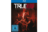 True Blood - Staffel 4 [Blu-ray + DVD]