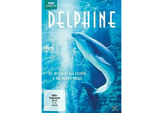 Delphine: Die Intelligenz der Delfine & The Dolphin Diaries - (DVD)
