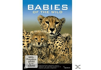 BABIES OF THE WILD - (DVD)