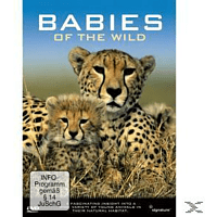 BABIES OF THE WILD [DVD]