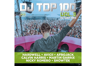 VARIOUS - DJ Top 100 Vol.3 2013 - (CD)