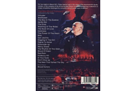The New Blood Orchestra - New Blood - Live In London [DVD]