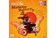 Hof/Mehlinger/Zamperoni/+ - Madame Butterfly - (CD)