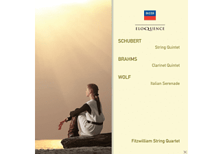 Fitzwilliam Quartet - Streichquintett / Klarinettenquintett / Serenade - (CD)