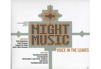 VARIOUS - Night Music - Voice in the Leave - (CD)