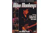 The Blow Monkeys - Live From London [DVD]