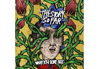 Story So Far - What You Dont See - (CD)
