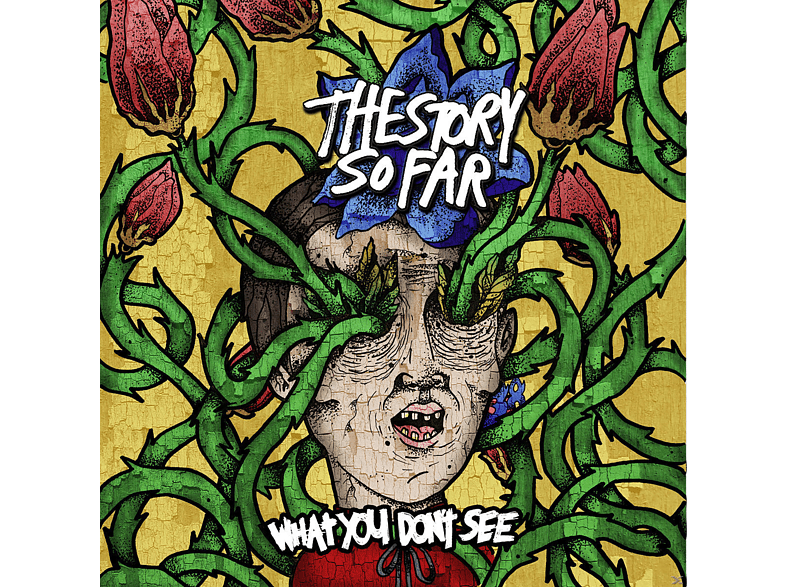 Story So Far - What You Dont See [CD]
