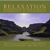 WELLNESS-ORCHESTER - Atmospheric Dreams Vol.2 [CD]