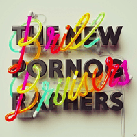 The New Pornographers - Brill Bruisers [CD]