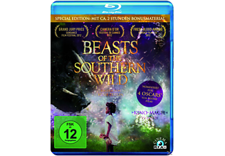 Beasts Of The Southern Wild (Special Edition) - (Blu-ray)