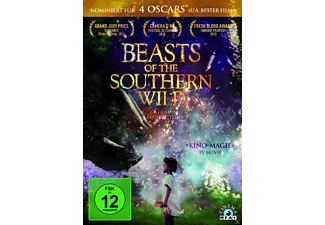 Beasts Of The Southern Wild - (DVD)