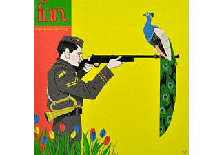 The Fun - Aim And Ignite - (CD)