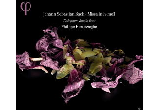 Collegium Vocale Gent, Philippe Herreweghe - Missa in h-moll - (CD)