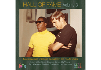 VARIOUS - Hall Of Fame Vol.3 - (CD)