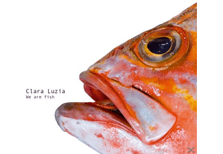 Clara Luzia - We Are Fish - (Vinyl)