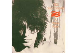 The Waterboys - A Pagan Place - (CD)
