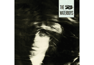 The Waterboys - A Pagan Place - (Vinyl)