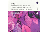 Skd - Works For Orchestra(Im Sommerwind/Passacaglia/Conc [CD]
