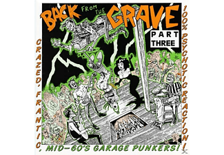 VARIOUS - Vol.3-Back From The Grave - (Vinyl)
