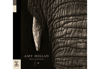 Amy Millan - Masters Of The Burial (Lp) - (Vinyl)