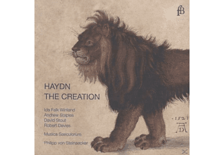 Musica Saeculorum - Haydn: The Creation - (CD)