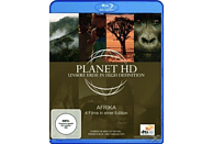 Planet HD - Unsere Erde in High Definition: Afrika [Blu-ray]