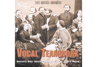 Larmore, Ford, Massis, Cullagh - Vocal Teamwork-Rare Operatic - (CD)
