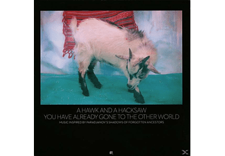 A Hawk And A Hacksaw - You Have Already Gone To The Other World - (Vinyl)
