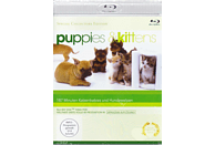 Puppies & Kittens [Blu-ray]